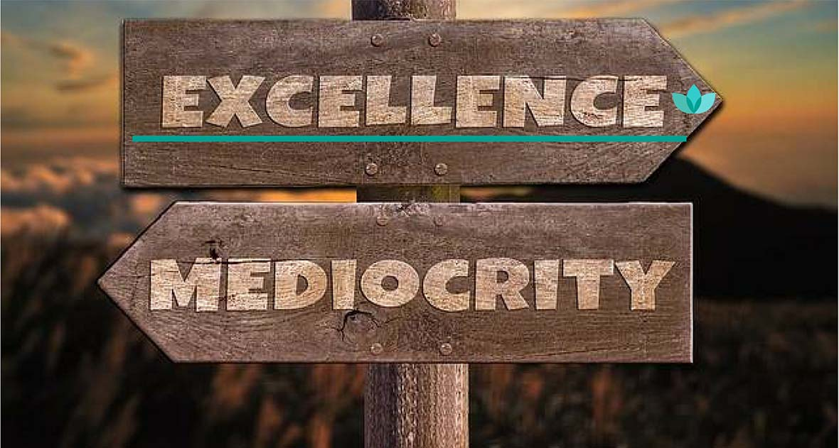 nancy-burgess-online-marketing-agency-excellence